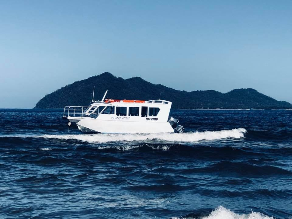 Dunk Island Animals: Dunk Island Transfers