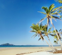 Coconut palms, sandy beaches, deserted tropical islands ... what's not to like about Mission Beach!