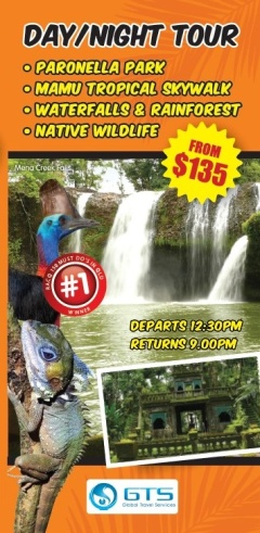 Day / Night Tour: Waterfalls, Rainforest, Wildlife, Paronella Park & Mamu Tropical Skywalk